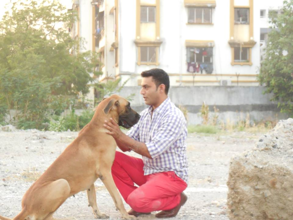 Dog training centres in Dadar|Andheri|Bandra|Khar road|Chembur|Breach Candy| Parel|Worli|Juhu|Goregao|Pawai|Santa Cruz - Pet services in matunga|Colaba|Charchgate|Dog trainer in matunga|Mumbai central|Pet's mating centre|Dogs mating consultant